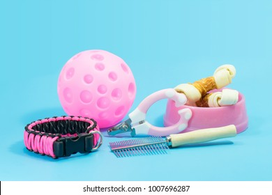 Pet supplies about collars, comb, nail scissors. Bowls with snacks and toys on blue background.