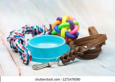 Pet Supplies Images, Stock Photos & Vectors | Shutterstock
