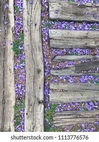 Petals of jacaranda tree and leaves between old wooden planks