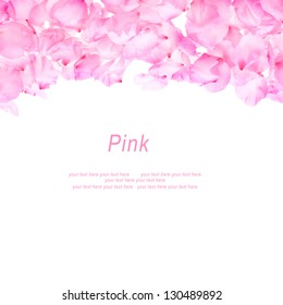 petals pink almond lined both side isolated on white background  with sample text