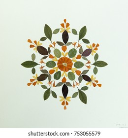 petals & pressed flower leaves mandala