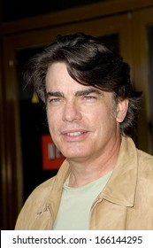 Peter Gallagher at FAMILY GUY's STEWIE GRIFFIN THE UNTOLD STORY DVD Party, Mann's National Theatre, Los Angeles, CA, September 27, 2005