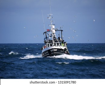 Peterhead, Scotland, 24th May 2016. Fishing boat underway to harbour to discharge fish.
