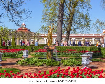 Peterhof, Russia, 05.18.2019. Beautiful garden of the Monplaisir Palace in Peterhof, with a gilded figure of Apollo, trimmed bushes and blooming flowers