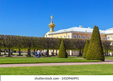 Peterhof, Russia, 05.18.2019. The trimmed alleys of the upper garden in Peterhof, the building of Peterhof and the dome of the corps under the coat of arms