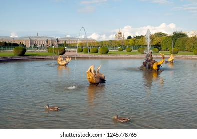 PETERHOF, SAINT-PETERSBURG, RUSSIA - SEPTEMBER 2, 2018: The Upper Garden. Ducks swim in The Mezheumniy (Indefinite) Fountain. On The background is The Grand Palace. The State Museum Preserve Peterhof
