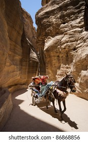 PETRA, JORDAN - JULY 14: Bedouins with their carriage drawn by horses carrying tourists to the fantastic gorge of the Siq in Petra on July 14,2009. Petra is one of UNESCO heritage.