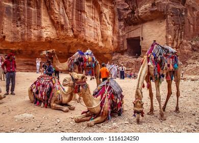PETRA / JORDAN - MAY 04, 2018 : Bedouin men and their camels at the ancient ruins of Petra.