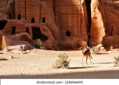 PETRA, JORDAN - OCTOBER 24, 2018: A Bedouin boy riding a camel in the ancient city of Petra, Jordan.