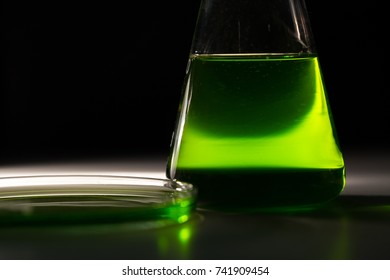 Petri dishand retort with green and blue with a chemical reagent. Chemical experiment with Laboratory glass