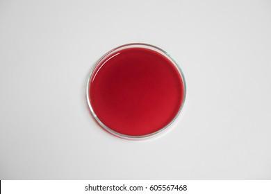 Petri dishes with culture medium, Blood Agar, Human Blood