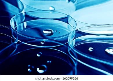 Petri dishes and liquid material. Laboratory concept.