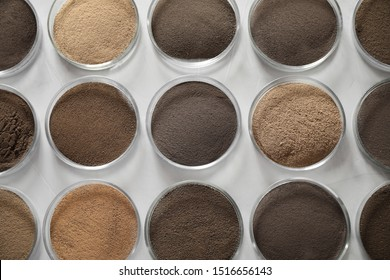 Petri dishes with soil samples on grey table, flat lay. Laboratory research