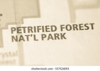 Petrified Forest National Park. Arizona. USA