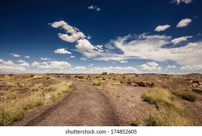 Petrified Forest National Park during sunny day, Arizona.