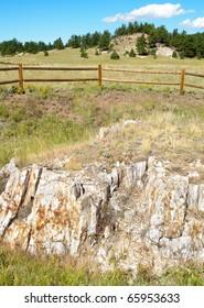 petrified rock, sequoia tree stump