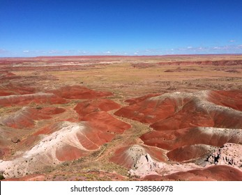 Petrified Tree National Park, Arizona