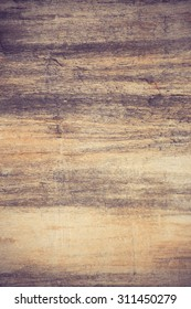 The Petrified Wood Texture Background vintage color
