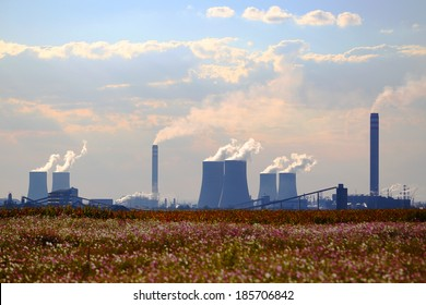 petrochemical factory with clouds and cosmos flowers, South Africa