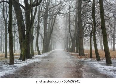 Petrovsky Park in Kronstadt near St.-Petersburg. Russia