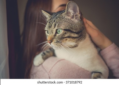 Pets Care.Young woman holding cat home.Cute cat watching and looking on woman's arm in home.Friendship.Love