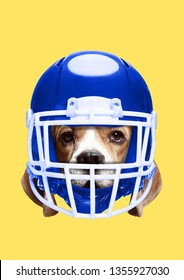 Pets rights. An animal protection. Dog's head in sport or american football blue helmet against yellow background. Negative space. Dogs and cats safety. Modern design. Contemporary art collage.