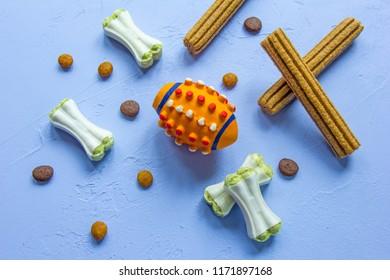 Petshop tools. Bones, dental sticks, nutrition and ball toy for dog at blue background