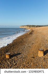 Pett level beach near Fairlight Wood, Hastings and Battle East Sussex England UK