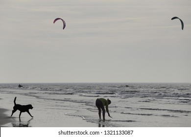 petten, netherlands february 17 2019 kite surfers a dog and a girl at the seashore