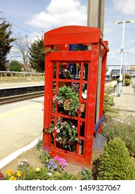 Petunias in hanging baskets on display, in garden made from old red London telephone box.