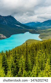 Peyto Lake in Banff National Park, Alberta