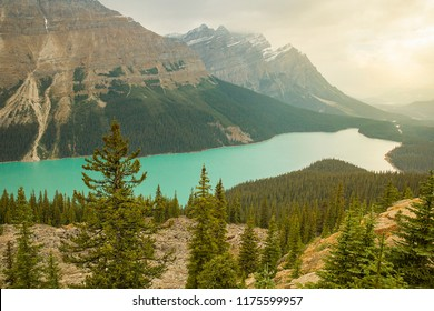 Peyto Lake is a glacier-fed lake in Banff National Park in the Canadian Rockies.