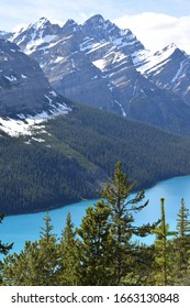 Peyto Lake, landmark of Canada, over Rocky Mountains, in Banff National Park.