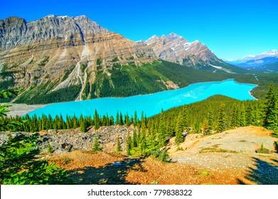Peyto Lake seen from Bow Summit, Banff National Park, Canada