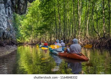 Phang Nga Bay, Thailand - April 5, 2018 : Group of tourists kayaking in the mangrove jungle of Krabi, Thailand