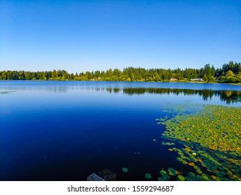 Phantom Lake is a small lake inside the city limits of Bellevue, Washington. A 2.6 mile long pedestrian trail circles the lake,