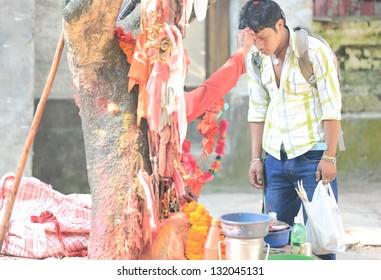 PHARPING, KATHMANDU/NEPAL - OCTOBER 4, : Sadhu blesses hindu faithful nepali youngster's forehead with color powder on October 04, 2012 in the Dakshinkali temple, Pharping-Kathmandu-Nepal.