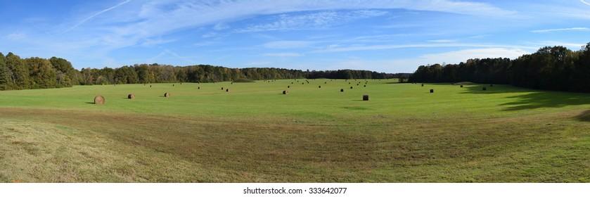 Pharr Mounds in Mississippi