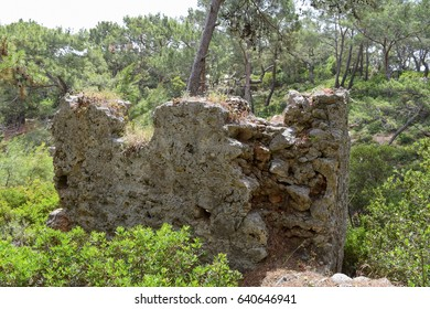 Phaselis Ancient City forest. Northern Necropolis - cemetery with elaborate tomb monuments. Turkey. Asia Minor - Shutterstock ID 640646941