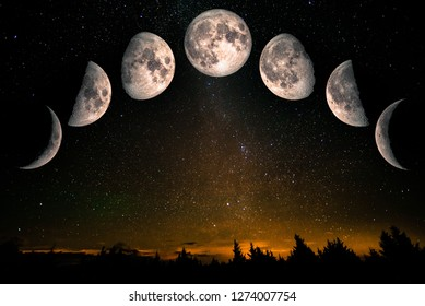 Phases of the Moon: waxing crescent, first quarter, waxing gibbous, full moon, waning gibbous, third guarter, waning crescent. Forest landscape with stars. The elements of this image furnished by NASA