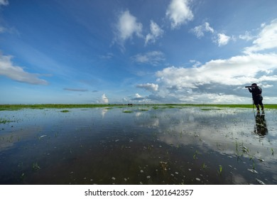 Phatthalung, Thailand - 8th Oct 2018; Morning view of lake Thale Noi, Phatthalung of Thailand.