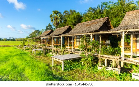 "PHATTHALUNG ,THAILAND -MARCH 09 ,2019: ""Sampaothai"" is viewpoint an interesting homestay on over 10 acres in Phatthalung province,Thailand."