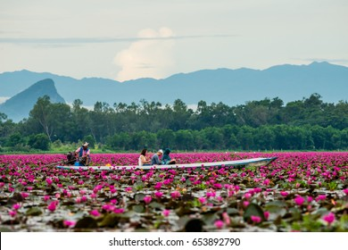 PHATTHALUNG, THAILAND - MAY 13, 2017 : Boat trip in THALE NOI Pink lotus View point in wetlands Thale Noi,  Phatthalung in South of THAILAND.