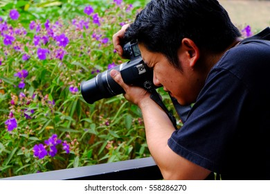 Phetchabun, Thailand, January 9th 2017: An unidentified outdoor photographer taking pictures of flowers.