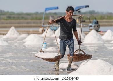 Phetchaburi Baan Leam Thailand: February 9, 2019 Worker carrying salt into baskets for transport to warehouses, farmers hurry up harvest before the start of the rainy season