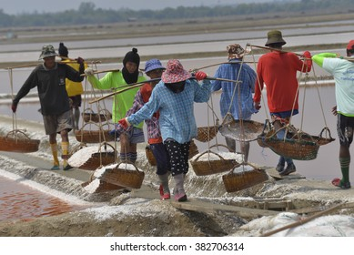 PHETCHABURI, THAILAND - FEB  22,2016 : Unidentified workers carrying salt at the salt farm It is a salt production is one of a great wide industry of Phetchaburi province Thailand.