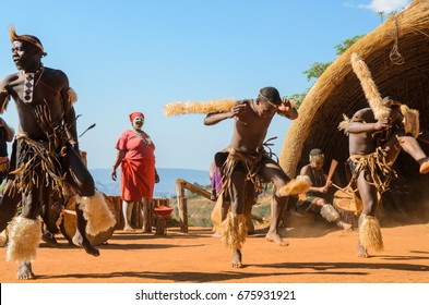 Phezulu village, Botha's Hill, South Africa - August 19, 2013: Zulu dressed in traditional gear jumpig, dancing and playng drums. Ritual demonstration.