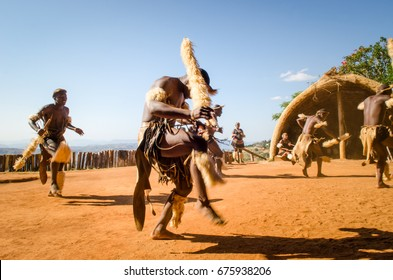 Phezulu village, Botha's Hill, South Africa - August 19, 2013: Zulu dressed in traditional gear jumping and dancing. Ritual demonstration