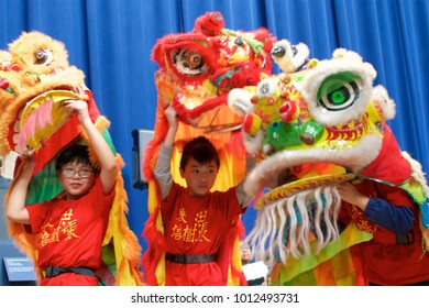 Philadelphia, PA, USA - January 27, 2018: A traditional Chinese lion dance is performed as part of Chinese New Year celebrations in Philadelphia. 2018 is the Year of the Dog.