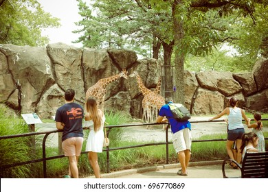 Philadelphia, Pennsylvania - Aug 12, 2017: People watch animals at the Philadelphia Zoo